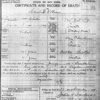 Death Certificate of Caroline Fleischman Wollner.