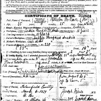 Wilhelm Wollner Death Certificate in 1879.