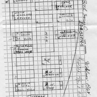 Diagram of Wollner graves at Salem Fields Cemetery.