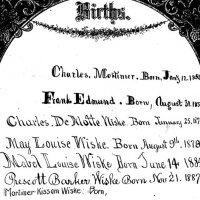 Wiske Family Bible--Births